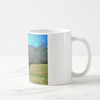 2 Brown Horses Teal sky Coffee Mug