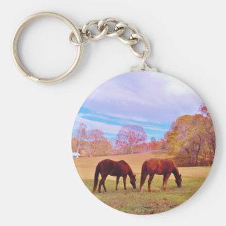 2 caballos de Brown en un campo coloreado Llavero Redondo Tipo Pin