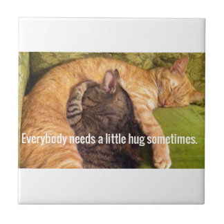 2 Cats Cuddling and Sleeping Ceramic Tile