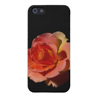 2 color de rosa anaranjados iPhone 5 cárcasa