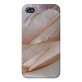 2 color de rosa rosados iPhone 4 coberturas