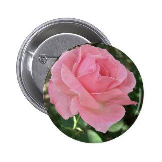 2 color de rosa rosados pins
