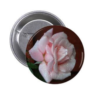 2 color de rosa rosados pin