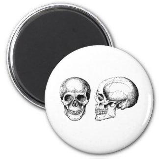 2 cráneos blancos imán redondo 5 cm