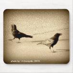 2 cuervos hacia fuera para un paseo alfombrilla de raton