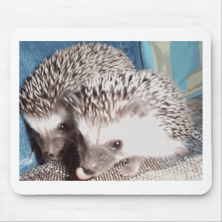 2 cute hedgehogs mouse pad