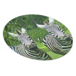 2 Cute Zebras Melamine Plate