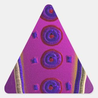 2 de alta tecnología pegatina triangular