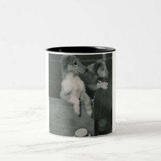 2 dogs box mug
