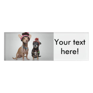 2 dogs with funny hats name tag