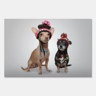 2 dogs with funny hats yard sign