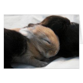 2 dormidos tarjeta de felicitación