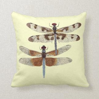 2 echó a un lado la almohada I de la libélula