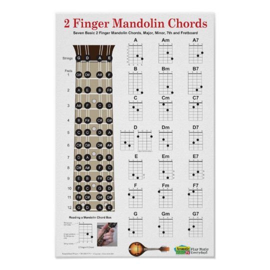 2 Finger Mandolin Chords And Fretboard Poster Zazzle
