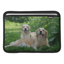 2 Golden Retrievers Laying in Grass MacBook Air Sleeve