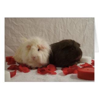 2 Guinea Pig Valentines Greeting Card