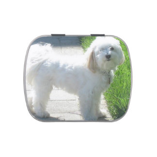 2 Havanese full.png Candy Tin