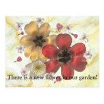 2 hay una nueva flor en nuestro jardín tarjeta postal