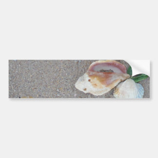 2 Hearts  in the sand with shells Bumper Sticker