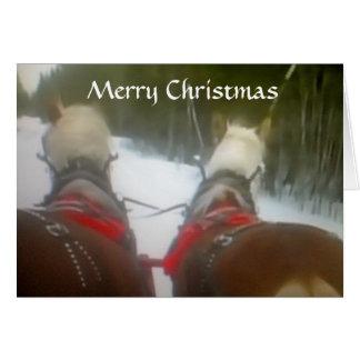 2 HORSE OPEN SLEIGH CHRISTMAS CARDS