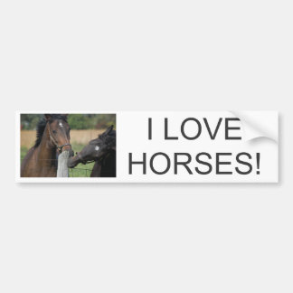 2 Horses Chewing a Fence Post Bumper Stickers