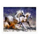 2 horses galloping postcard