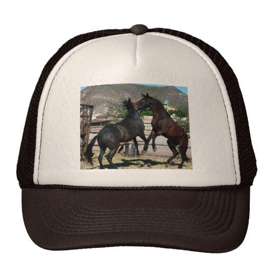 2 Horses in love,Almeria Spain  .Photo Colette Trucker Hat