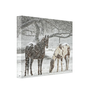 2 Horses Outside in Winter during Snowy Weather Canvas Print