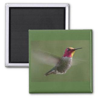 "2"" hummingbird magnet"