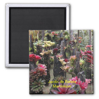 2 INCH SQUARE MAGNET