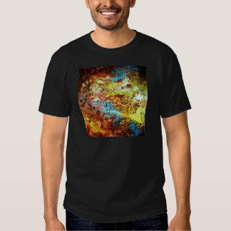 2.JPG infeccioso Camisas