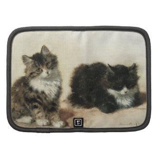 2 kittens organizer