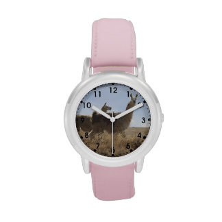 2 Llama - Two Llamas in Andes Mountain Plains Wristwatch