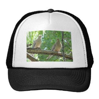 2 morning doves trucker hat