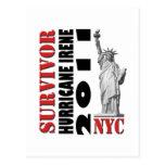 #2 NYC Survived Hurricane Irene Postcards