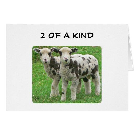 2 OF A KIND ANNIVERSARY LOVE-I LOVE EWE GREETING CARD