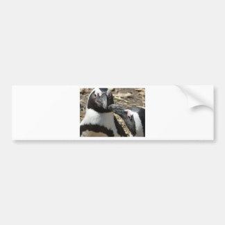 2 penguins car bumper sticker