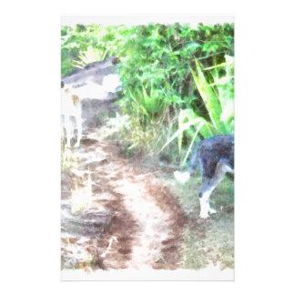 2 perros en una trayectoria  papeleria