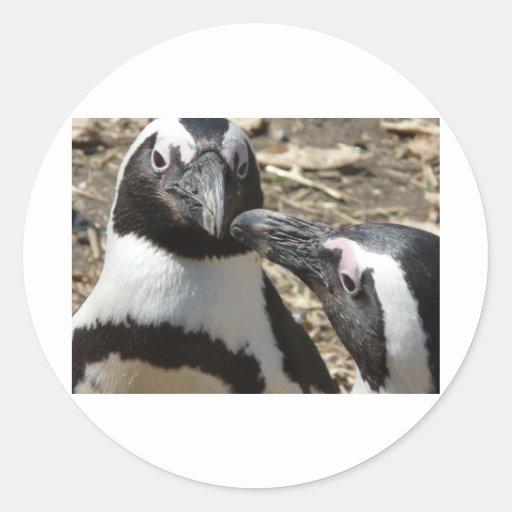 2 pingüinos pegatina redonda