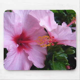 2 Pink Hibiscus, Dark Mouse Pad