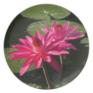 2 pink water lilies Plate #10 001025
