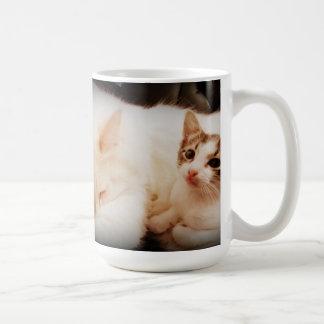 2 poses Cute Cat Mug