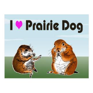 2 prairie dogs (2) postcard