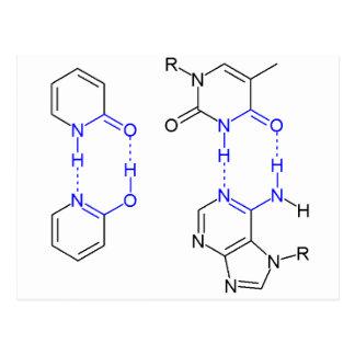 2-Pyridone Chemical Basepair Post Card
