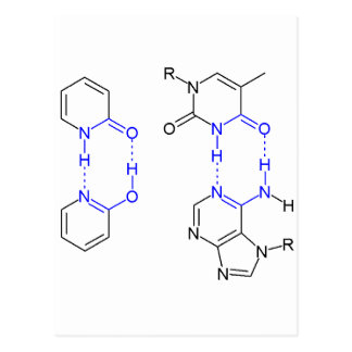 2-Pyridone Chemical Basepair Postcard