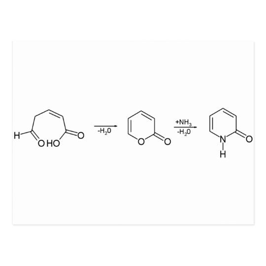 2-Pyridone Chemical Synthesis 1 Postcard