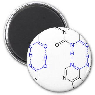 2-Pyridone sustancia química Basepair Imanes