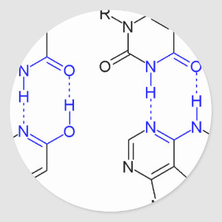 2-Pyridone sustancia química Basepair Pegatina Redonda