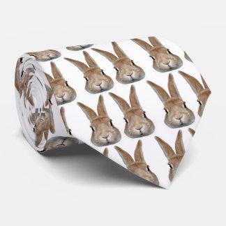 2 rabbits tie