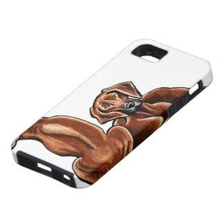 2 Rhodesian Ridgebacks iPhone SE/5/5s Case